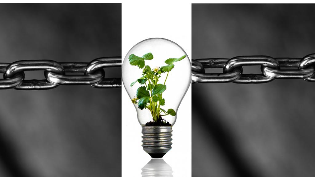 Cadena de Valor de la Innovación